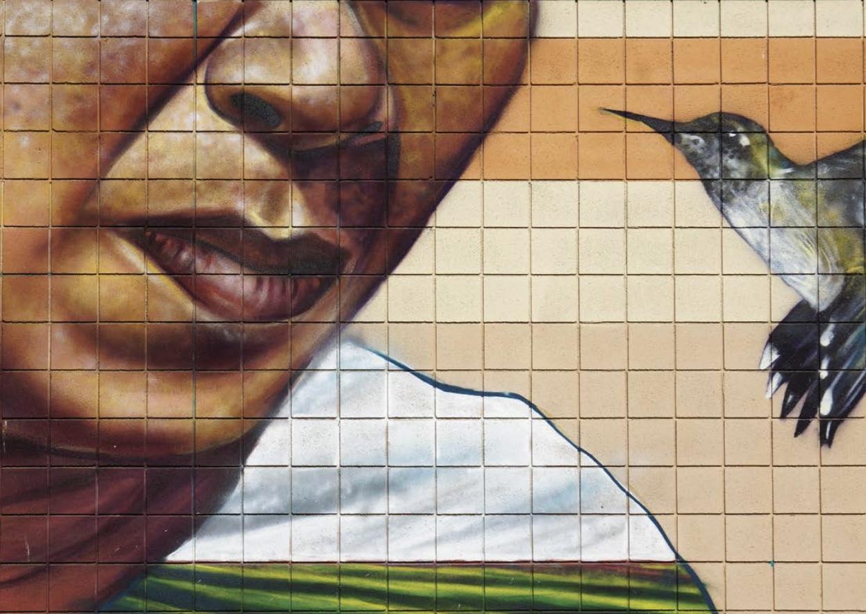 Mata Ruda street art (Randall Cole)