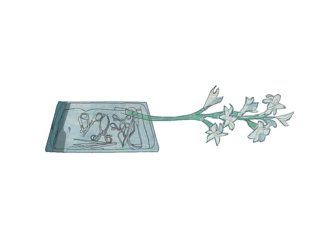 flower (tile)