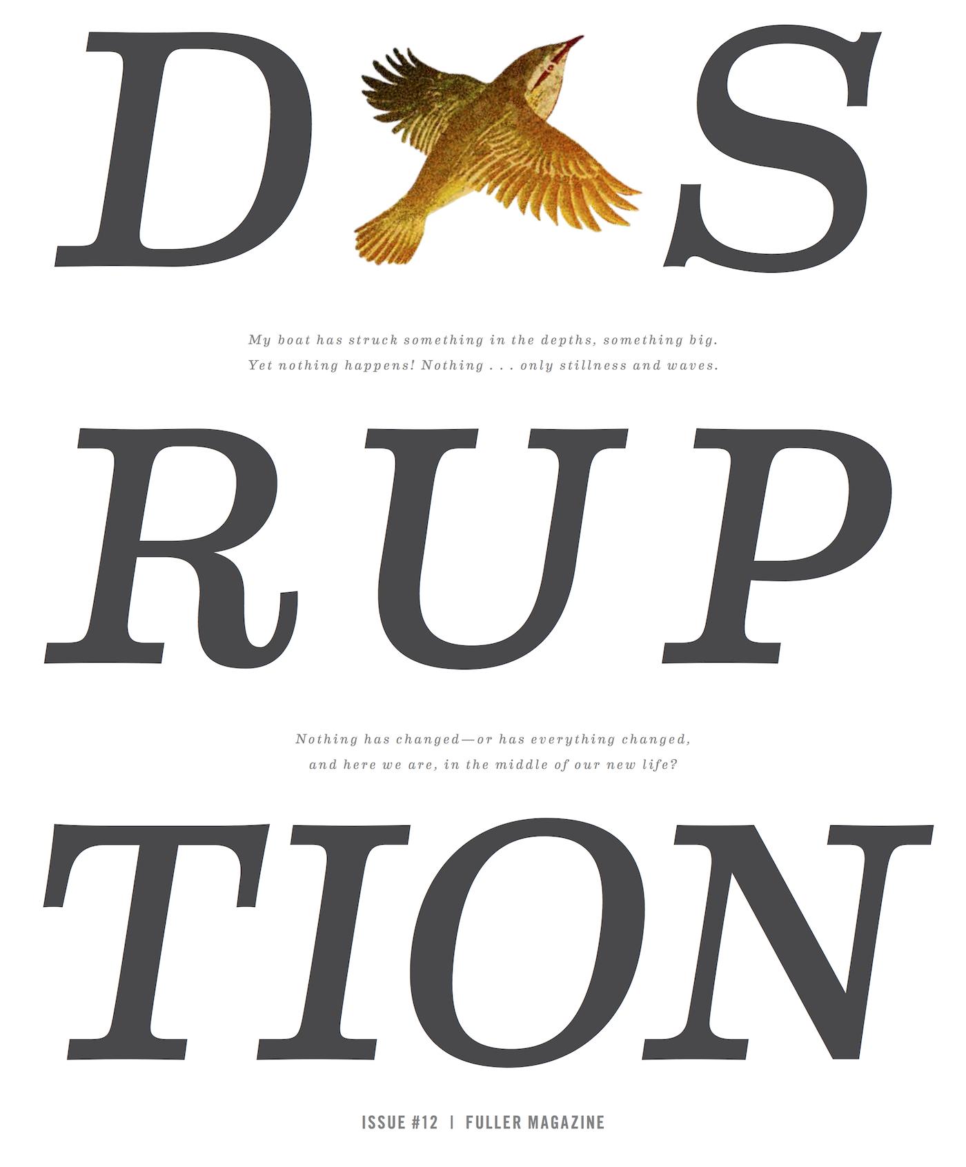 Disruption Cover