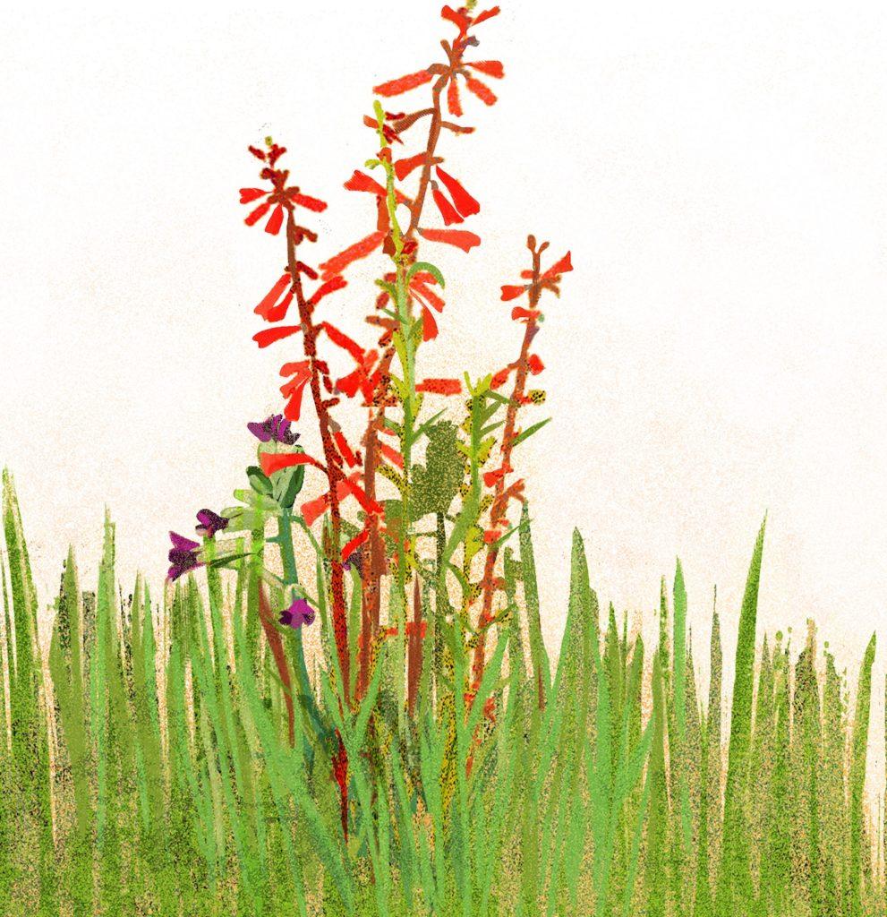 Flower (Detail), disruption