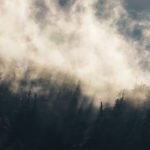 clouds and forest
