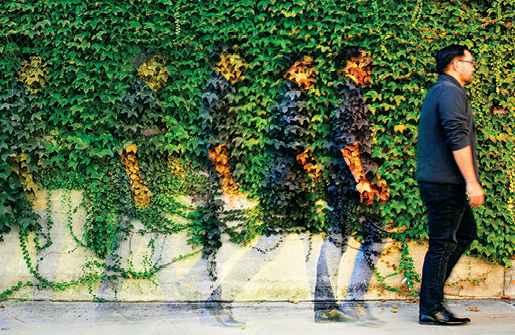 man walking past ivy